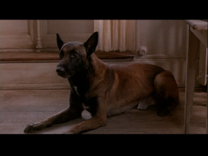 Henry & June dog de Anais